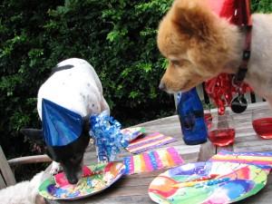 Four-legged friends snuffle up celebration pupcake